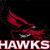 Hollis Grade School District 328   Web site