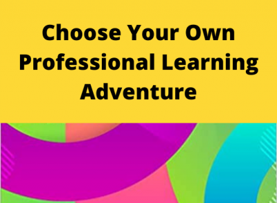 choose your own professional adventure