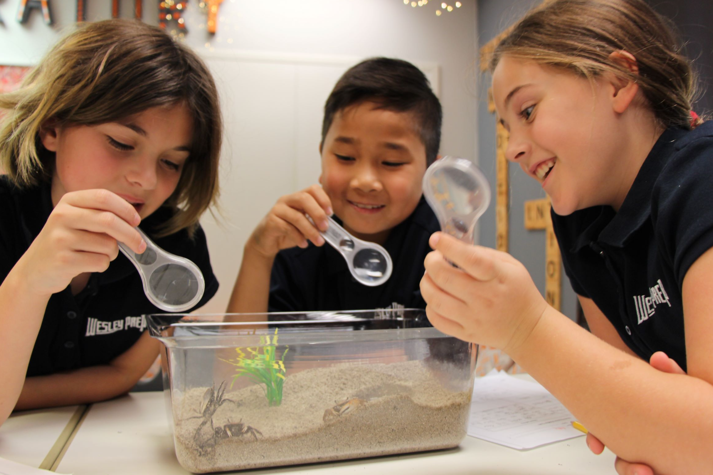 Wesley Prep Inspires with Hands-On Learning