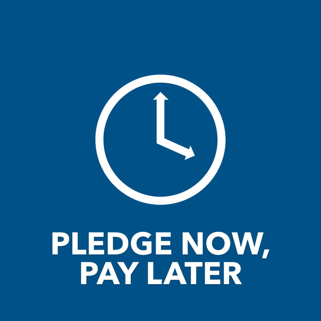 Pledge Now, Pay Later Icon