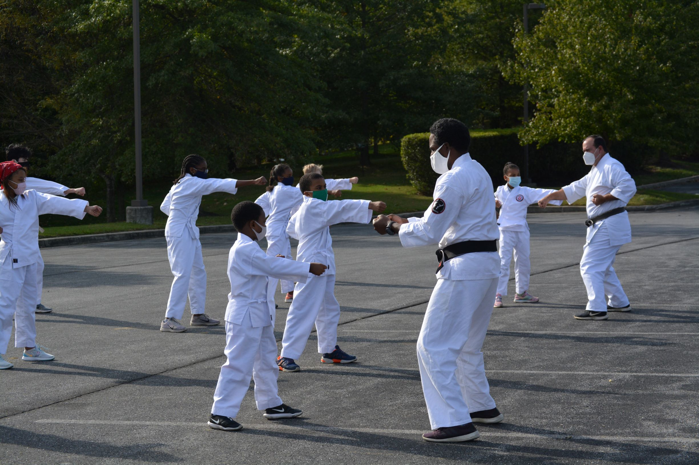 Karate - mid level punch