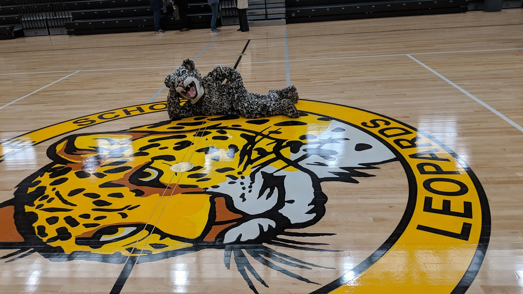 Gym Floor and Mascot image