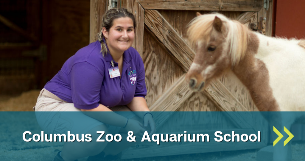 Link to Columbus Zoo and Aquarium School page