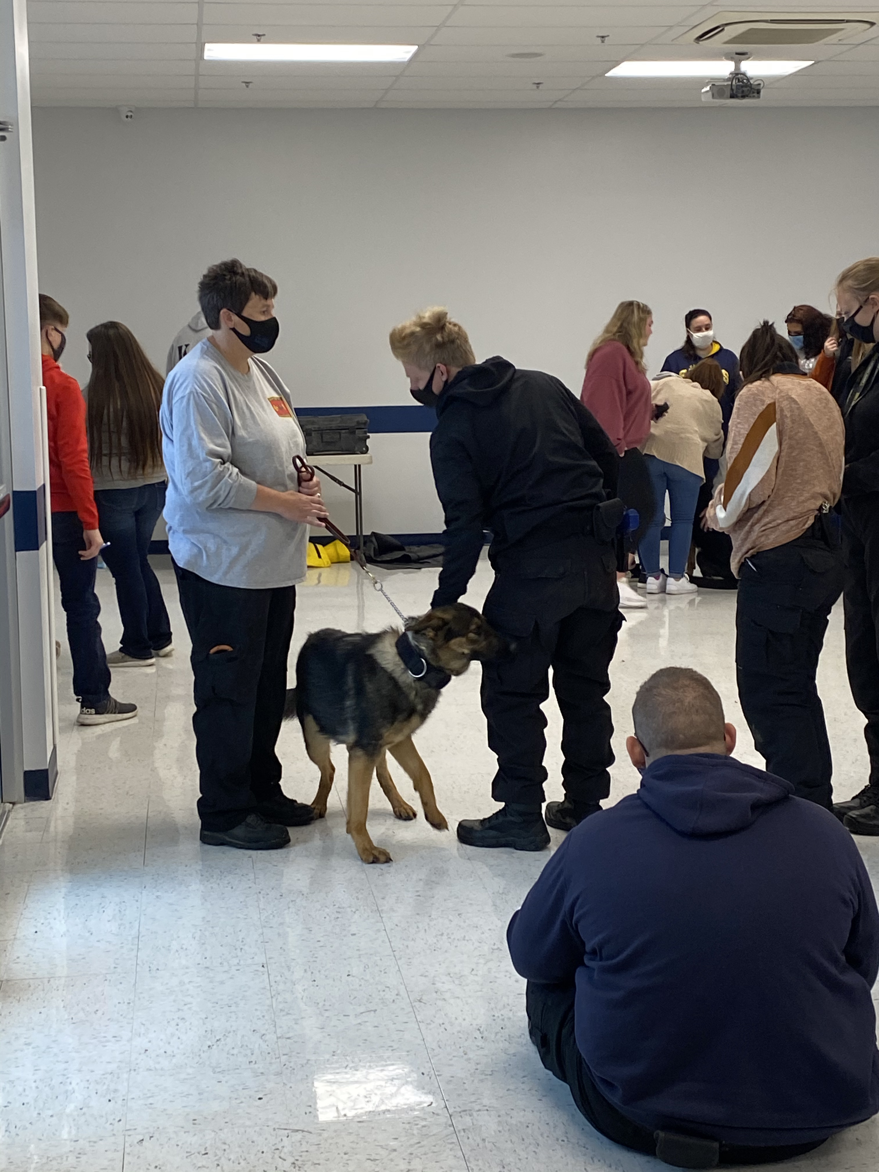 Students and staff interacting with SAR dog