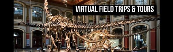 Virtual Field Trips & Tours