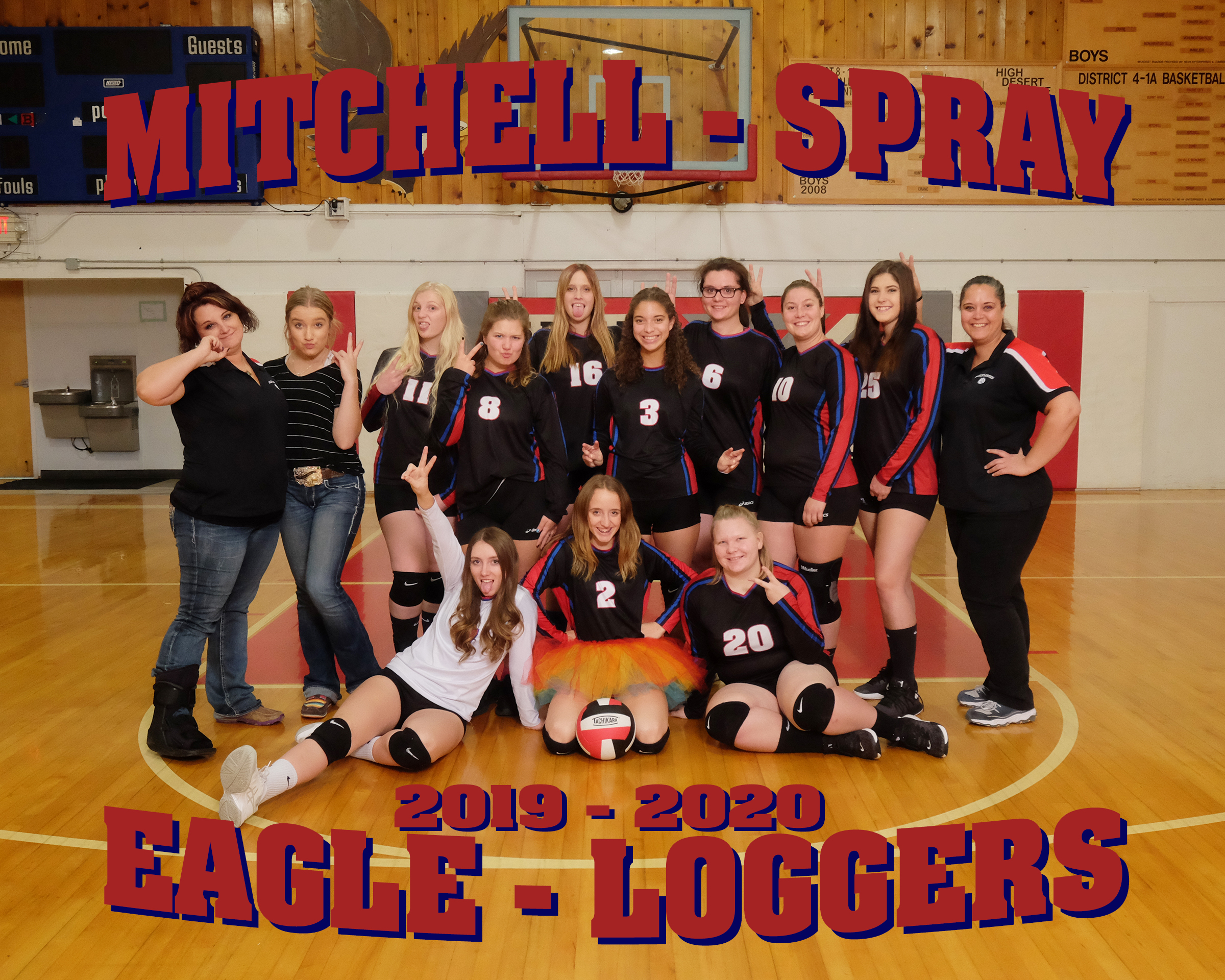 2019-20 Volleyball