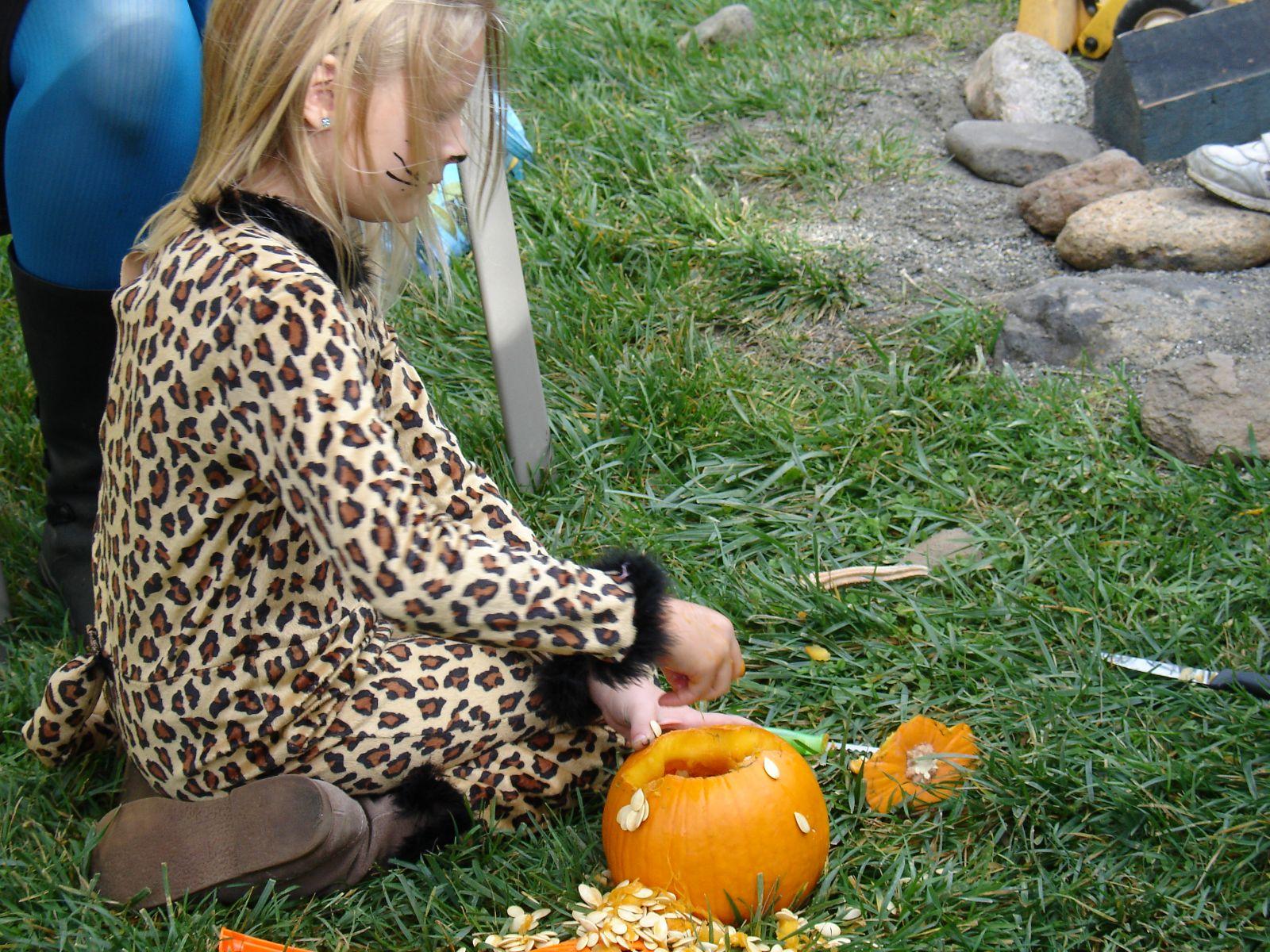 gutting pumpkin