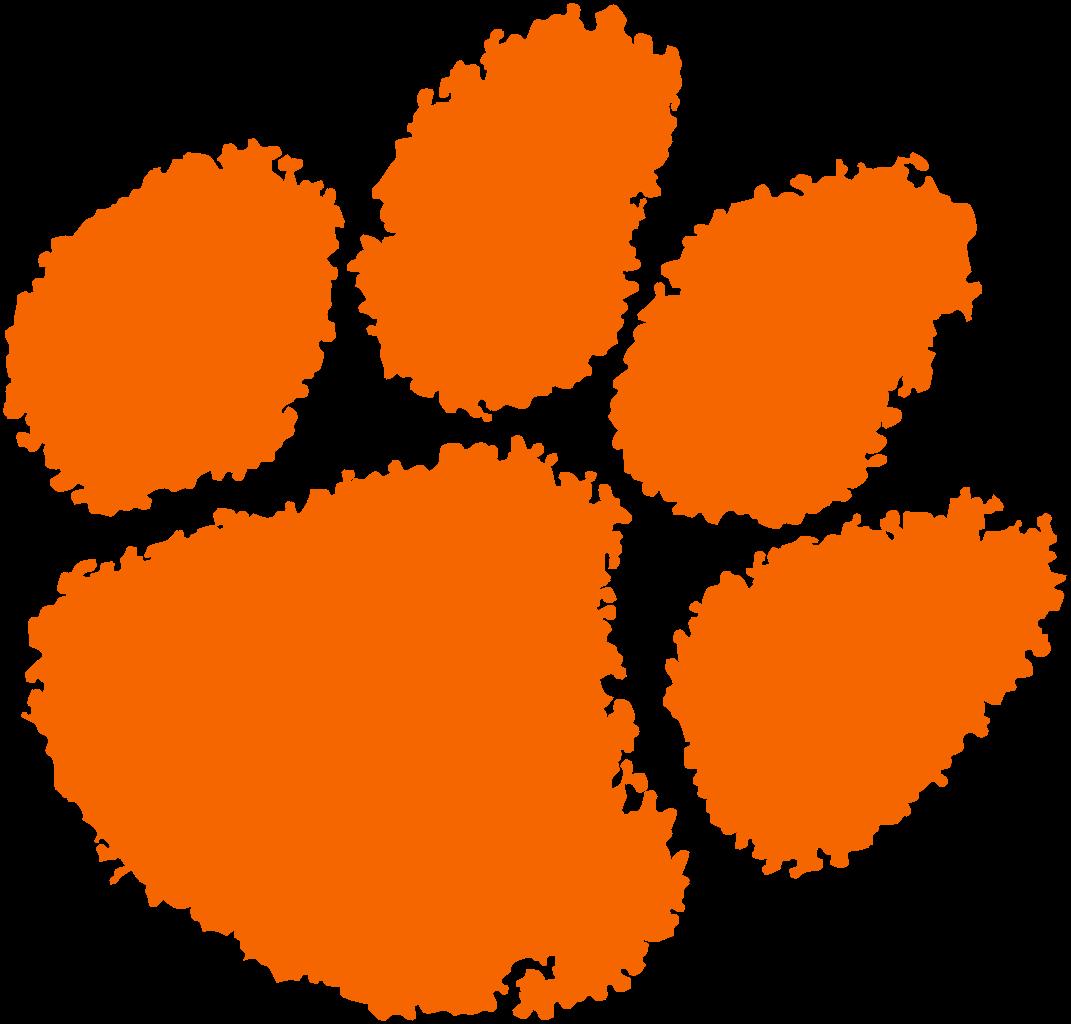 Tiger orange paw