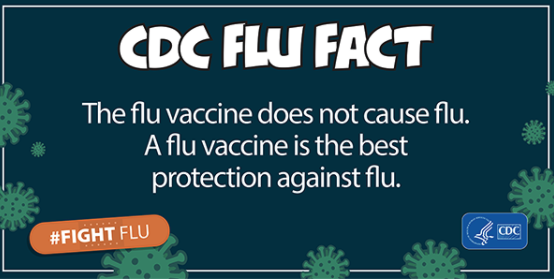 CDC FLU FACT: flu vaccine doesn't cause the flu. A flu vaccine is the best protection against the flu