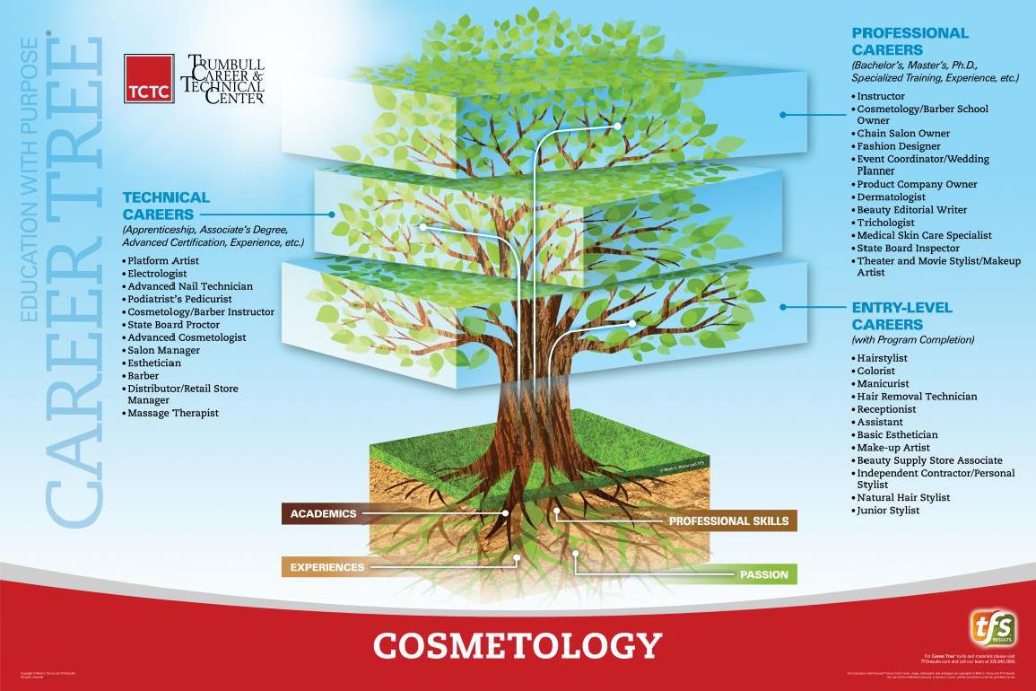 Cosmetology Career Tree