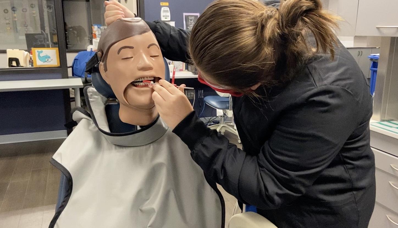 Student working on dental mannequin