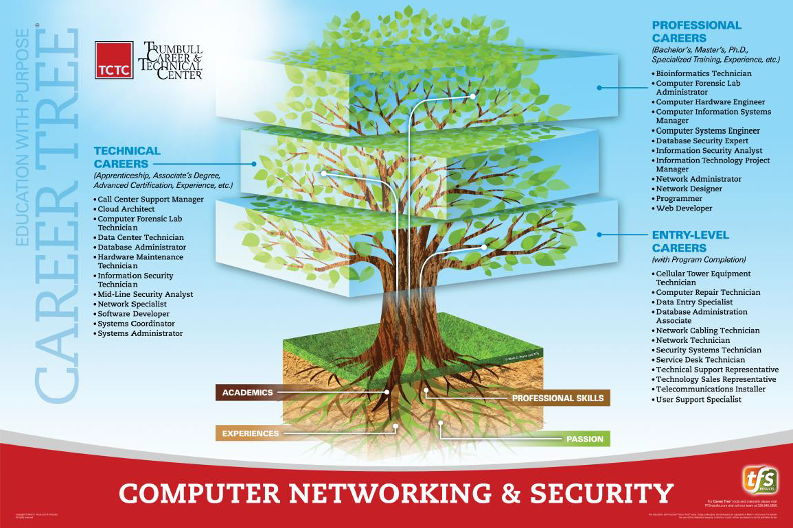 Computer Networking & Security Career Tree