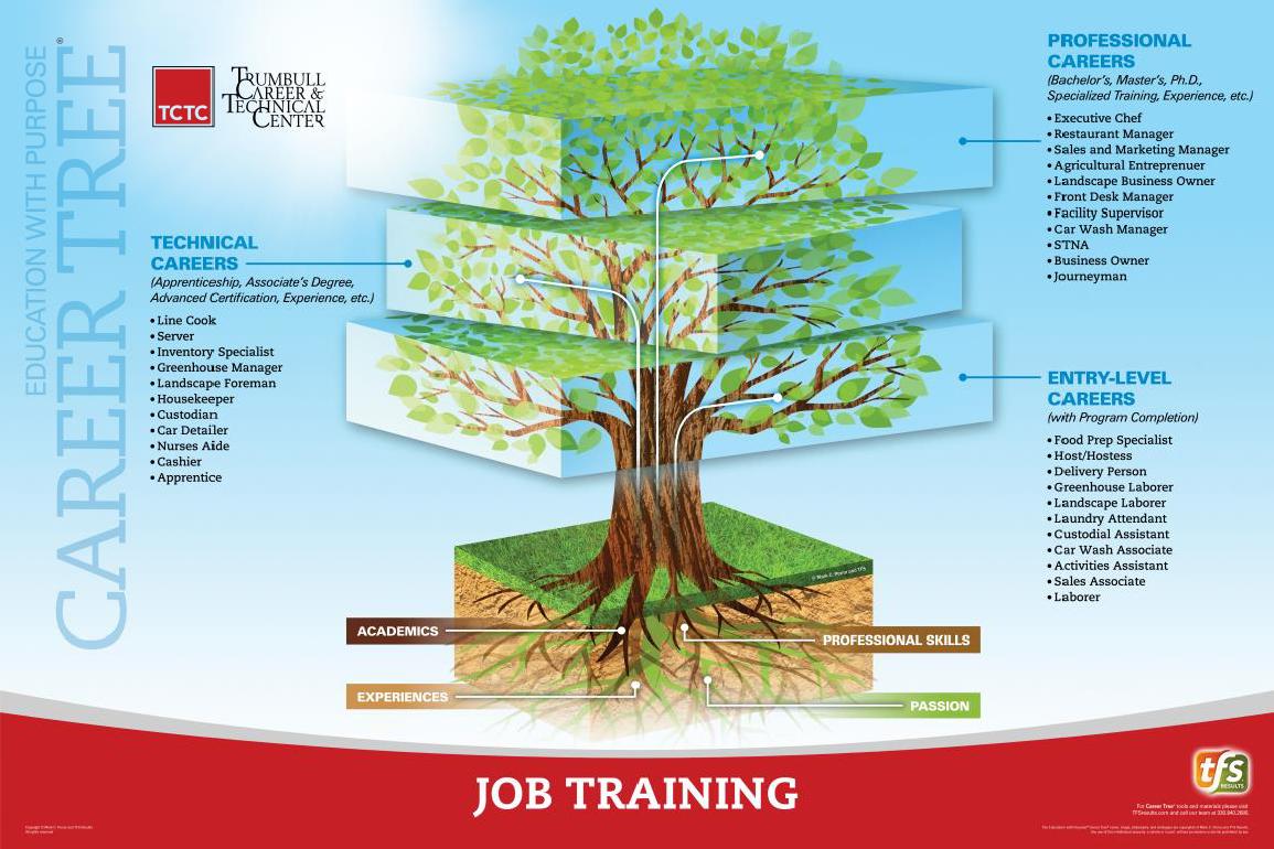 Job Training Career Tree
