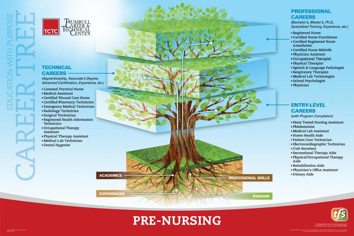 Pre-Nursing: Phlebotomy Career Tree