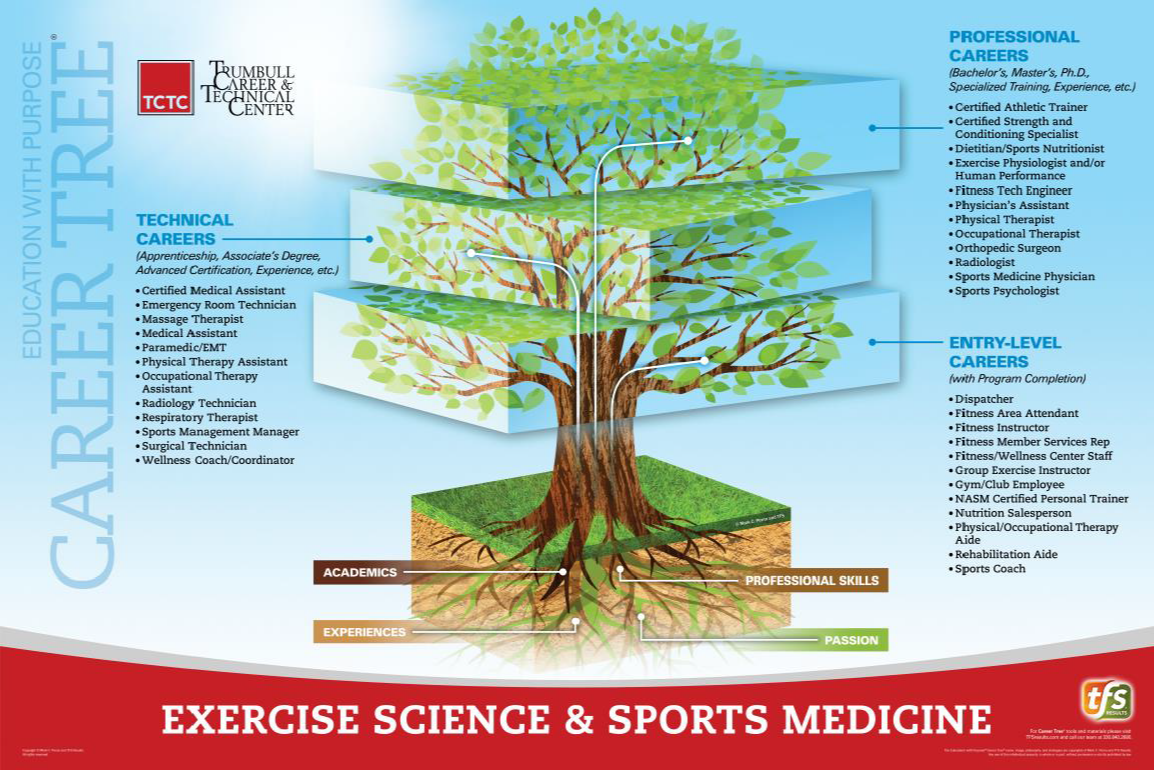 Exercise Science & Sports Medicine Career Tree