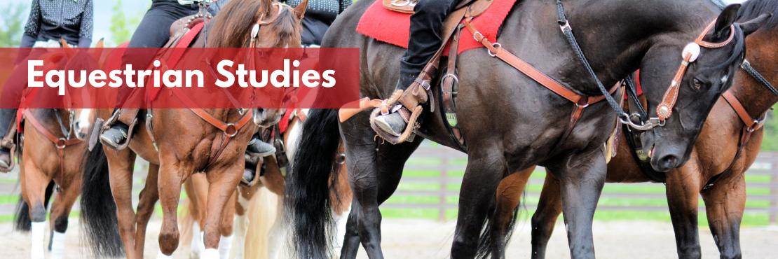 Equestrian Studies banner