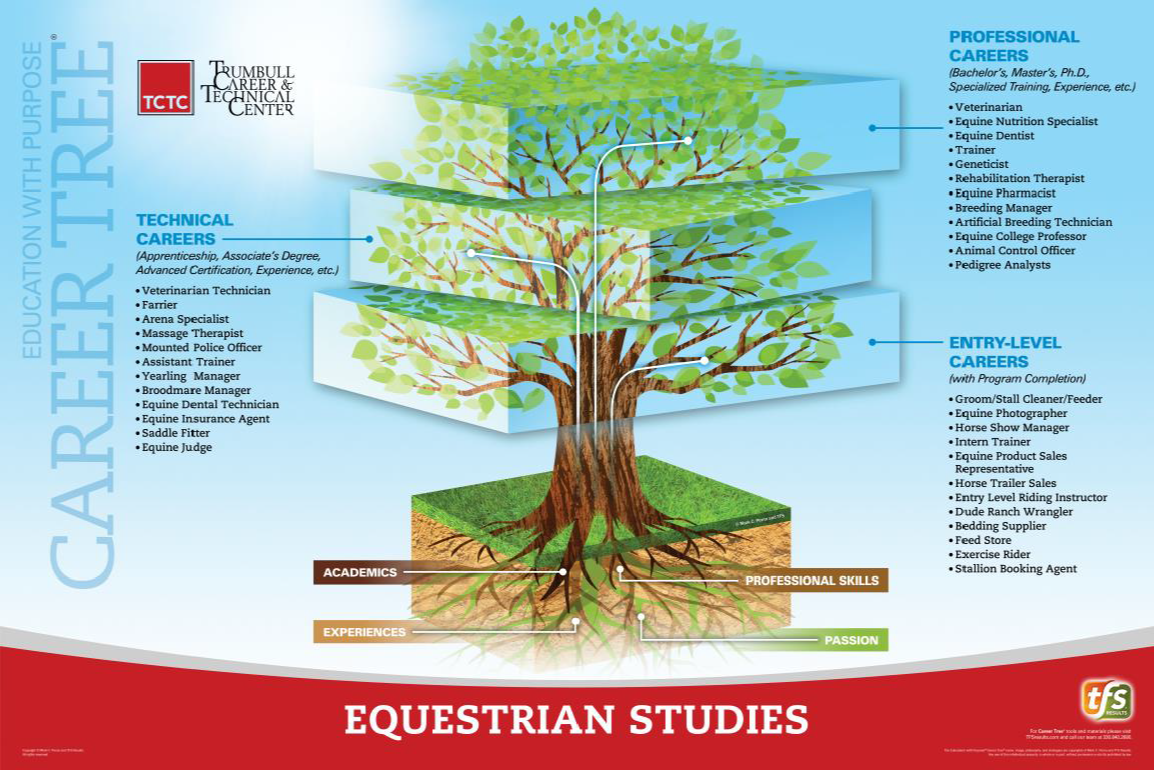 Equestrian Studies Career Tree