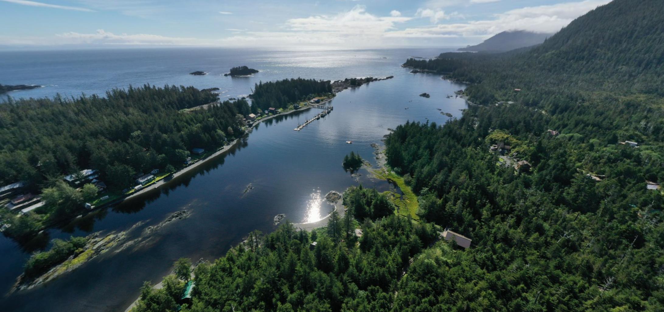 Port Alexander Drone Picture