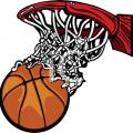 medium_basketball-net