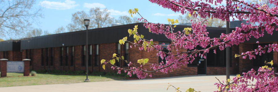 Picture of outside of Plainwell Middle School with flowering pink tree