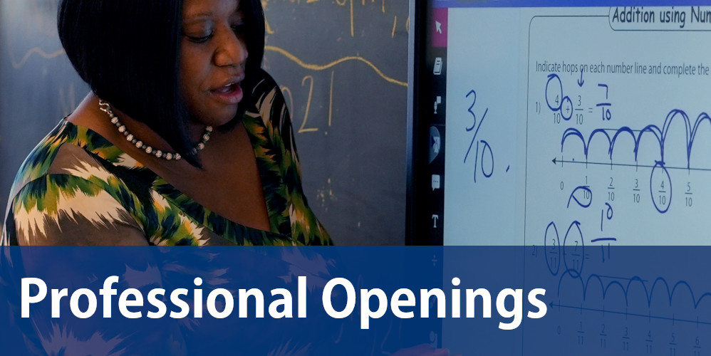 Professional Openings