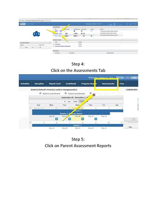 Parent Access to NYS 3_Page_2