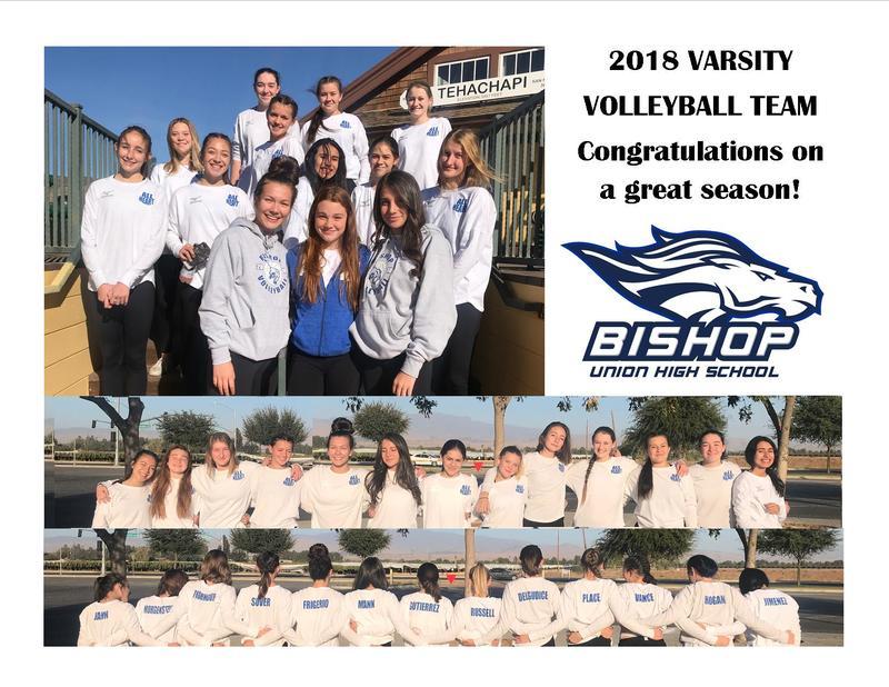 Photos of the 2018 Varsity Volleyball team.