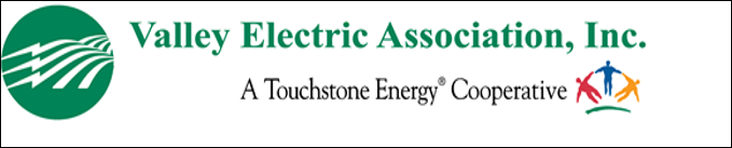 Valley Electric Corporation