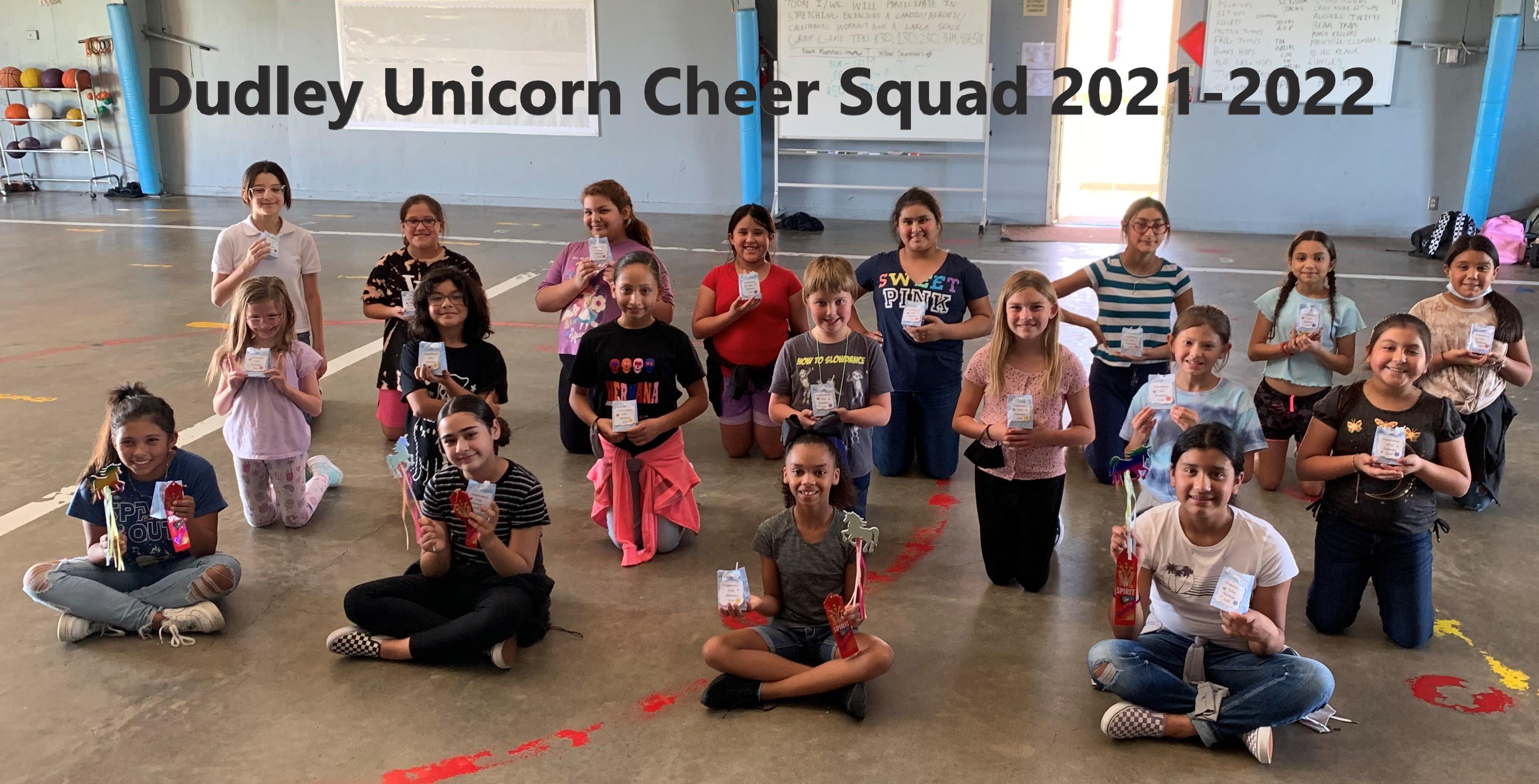Cheer 2021-2022
