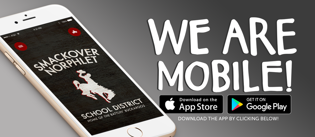 Download SNSD phone app