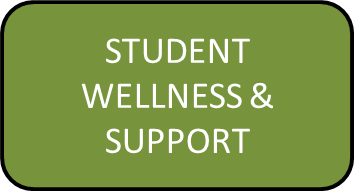 student wellness and support