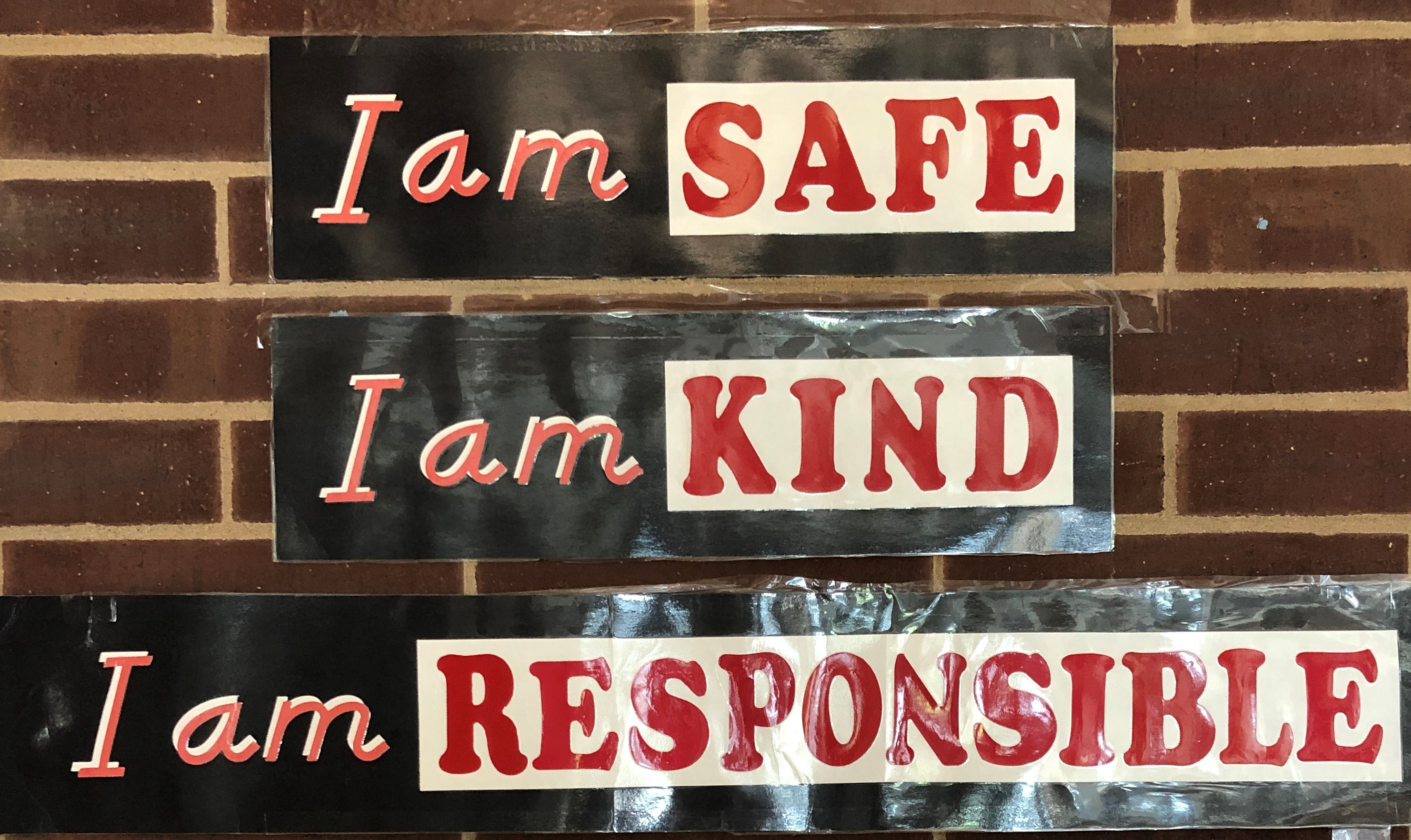 safe kind responsible picture