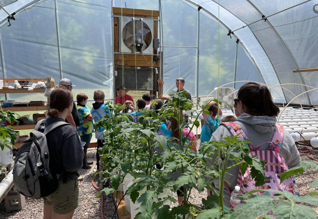 Walton students visit the PATCH Sunnybank Farm