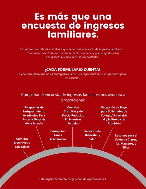 Family Income Survey Flyer Spanish
