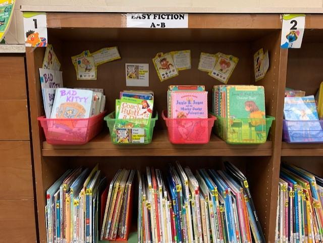 Bookshelves in the library