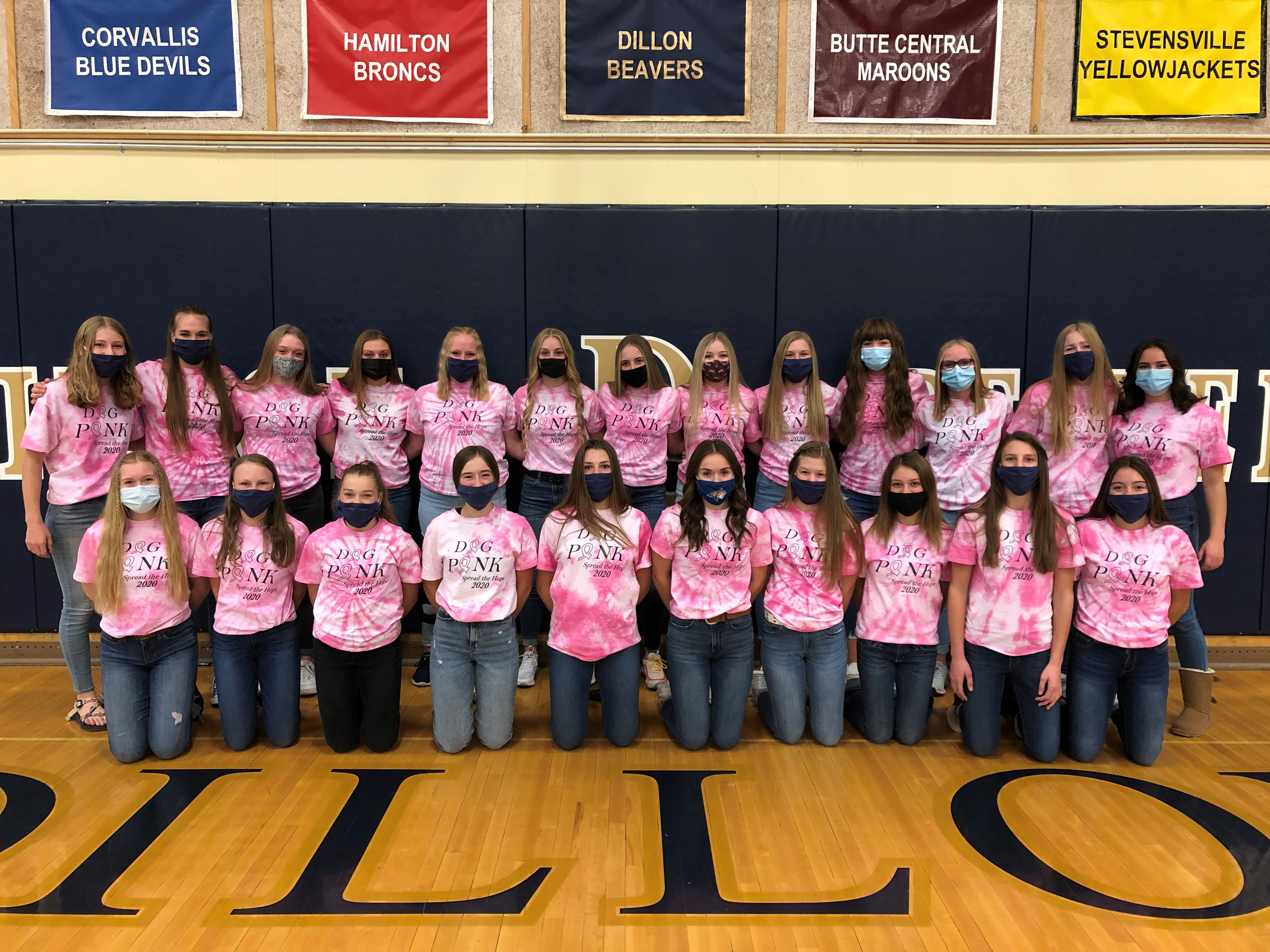 """volleyball team wearing """"Dig Pink"""" shirts"""