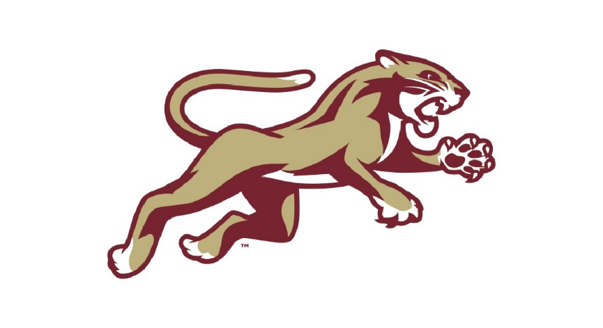 Picture of a cougar with school colors of maroon and gold
