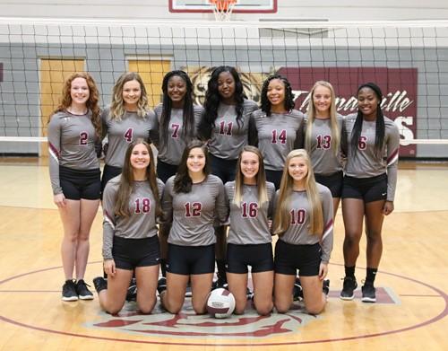 varsity volleyball team 2020