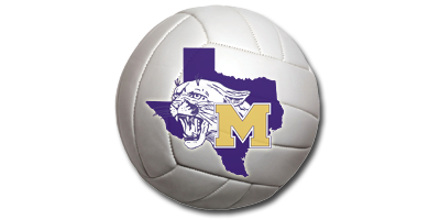 Volleyball with School logo