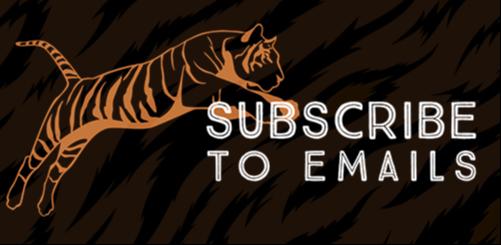 SubscribeEmail
