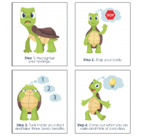Turtles pictures on cards