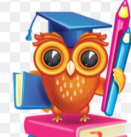 owl standing on books