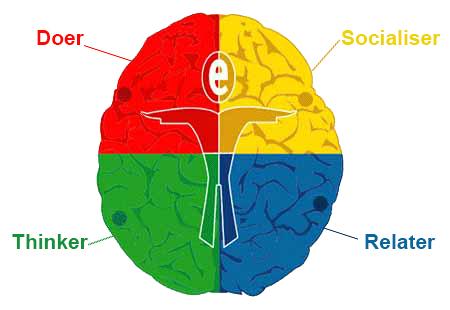 flyer brain