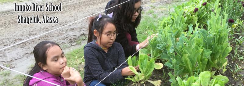 photo of students working in a garden