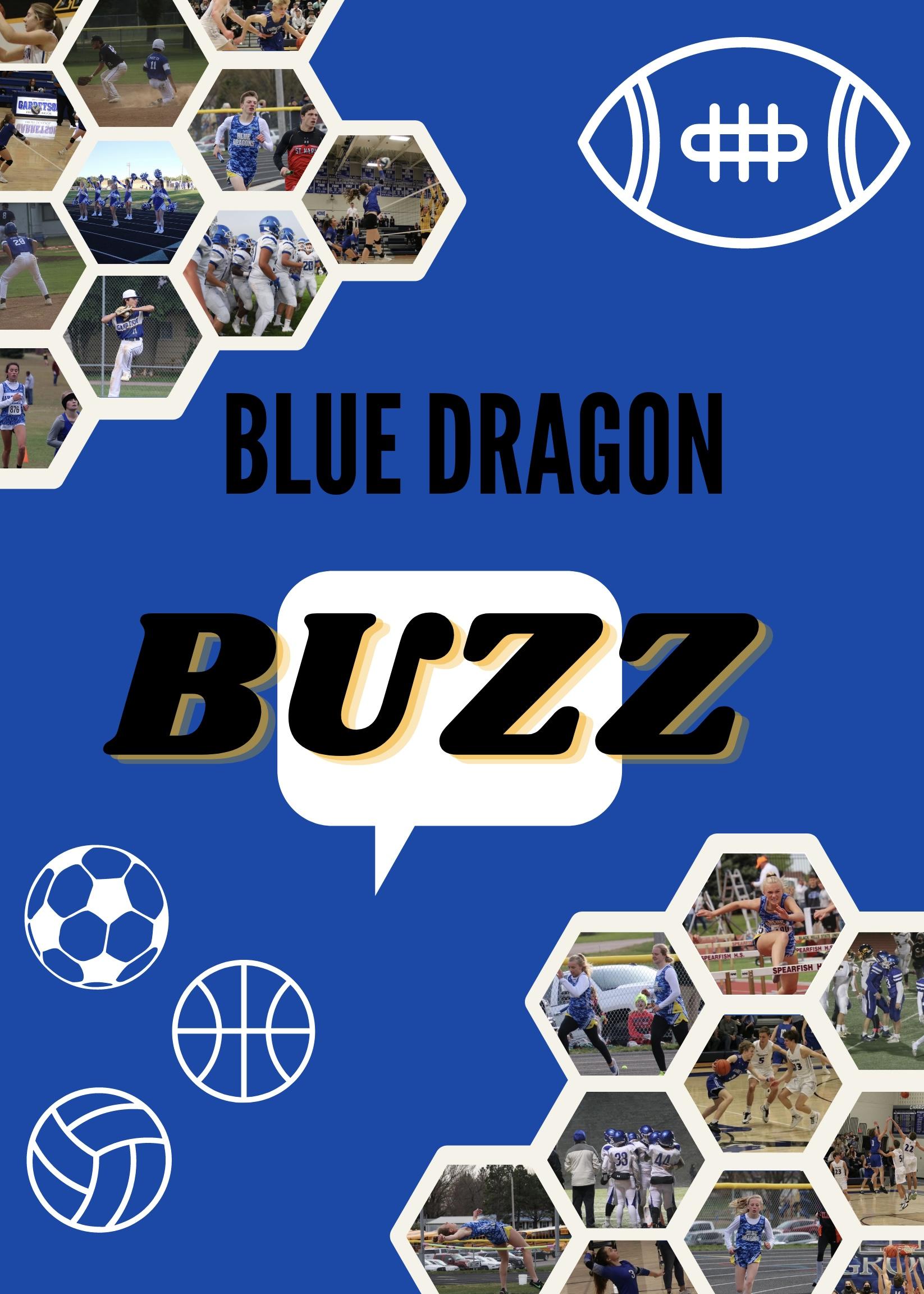 Blue Dragon Buzz Podcast