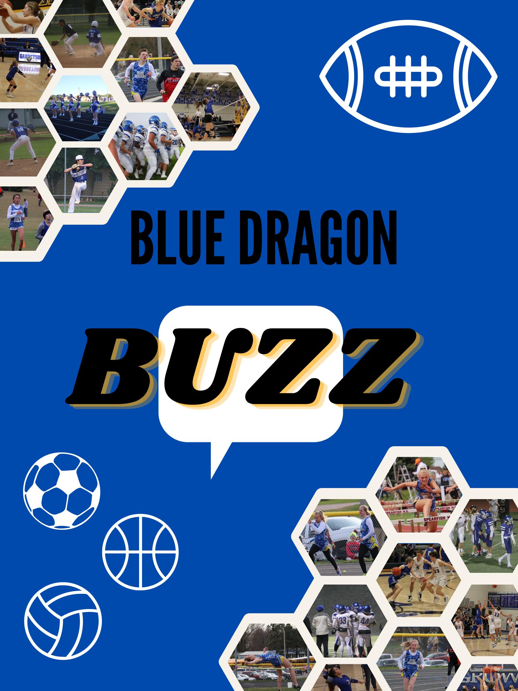 Blue Dragon Buzz Cover Art